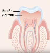 Здрав зъб